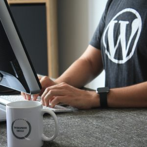 wordpress editing