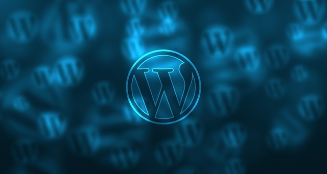 WordPress SEO Guide, WP Editor